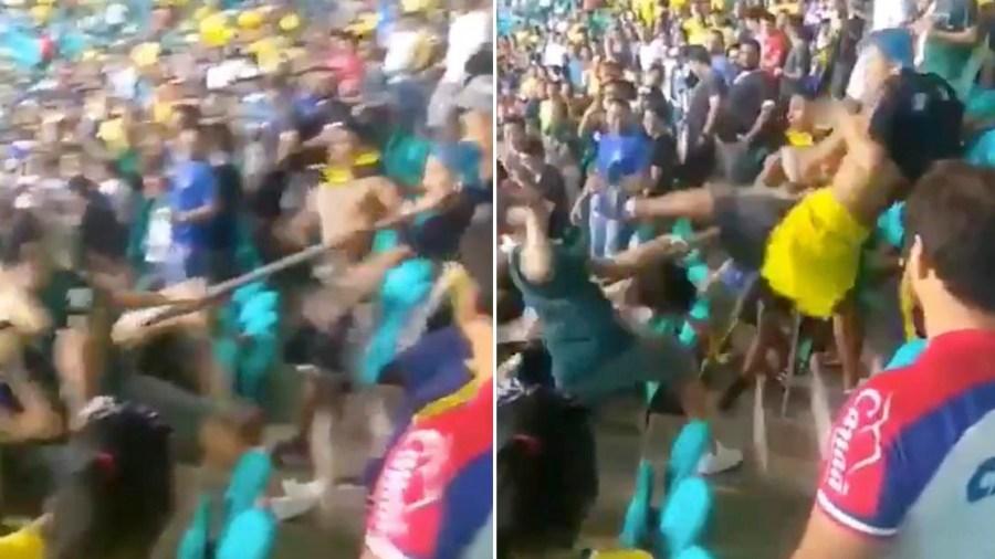 hinchas colombia brasil argentina copa amemrica