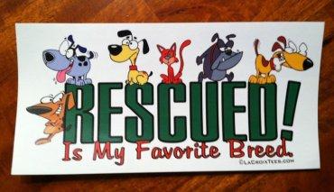 www.rescuedismyfavoritebreed.org