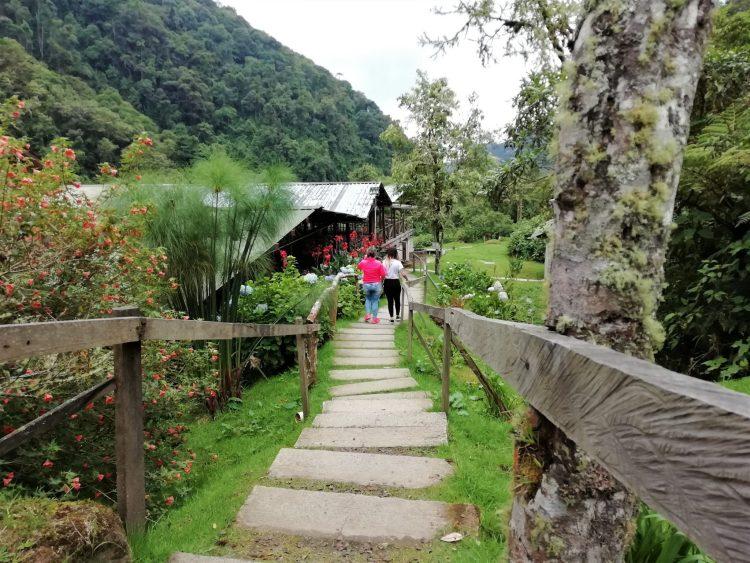 Hot springs of San Vicente - Santa Rosa de Cabal - Nature Reserve - Coffee Region - Colombia - Transportation Plan 1