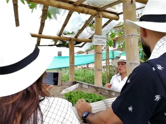 Plan Alta Montaña en el Eje Cafetero - Colombia - Plan Turístico - Paisaje Cultural Cafetero - Tour del Cafe - Eje Cafetero