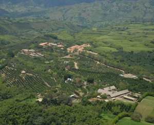 aerial-view-park-panaca-quindio-coffee-axis-colombia