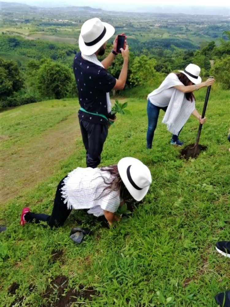Altagracia Coffee Tour - Don Juan Currency - Coffee Axis - Colombia Turismo