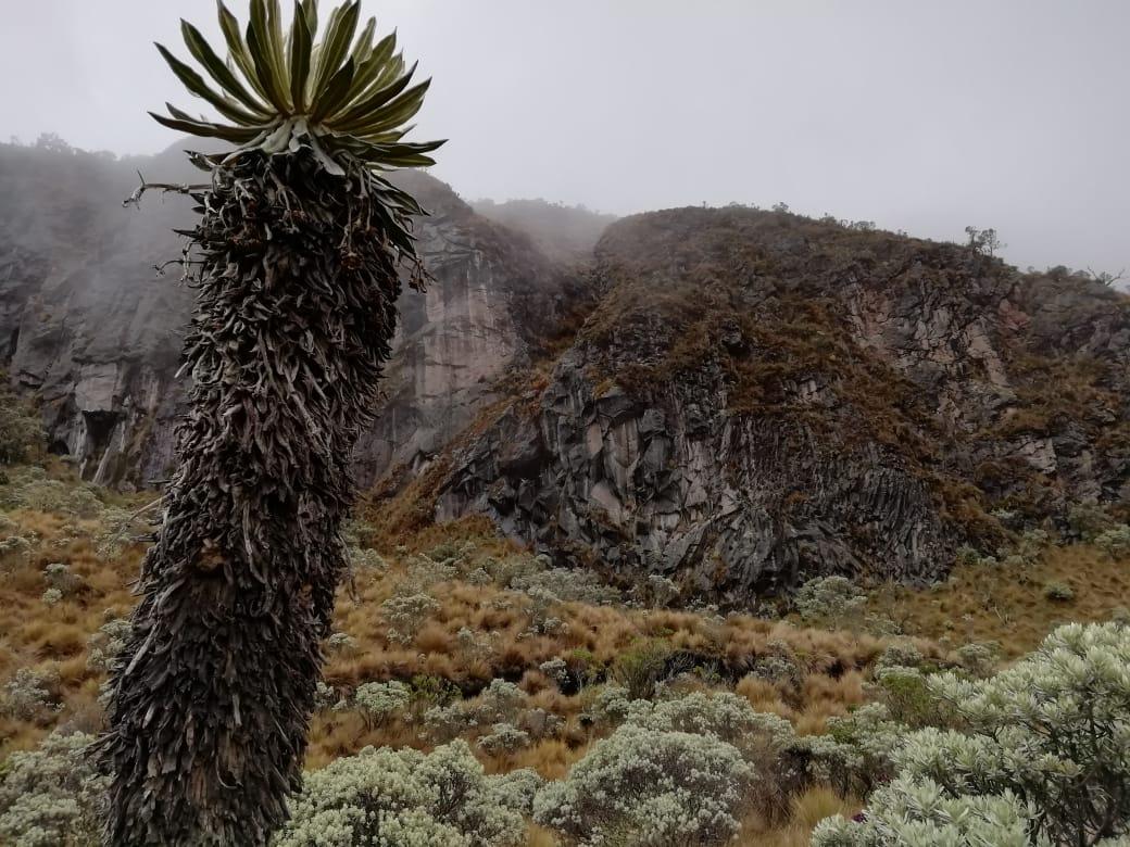 Nevado de Santa Isabel