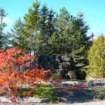 colonial's granite waterfall granite