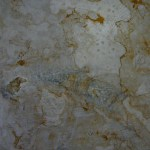 fossil hill colonial quarry sawn slab
