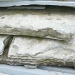weathered pond bottoms skins