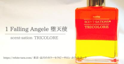 「堕天使」センセーショントリコロール1 カラーセラピーボトルの意味と解説