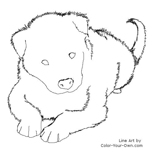 border collie coloring pages   Coloring Pages for Familly ...