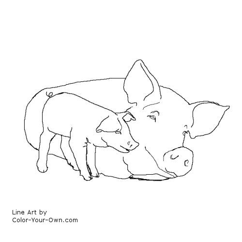 Sow and Piglet Coloring Page