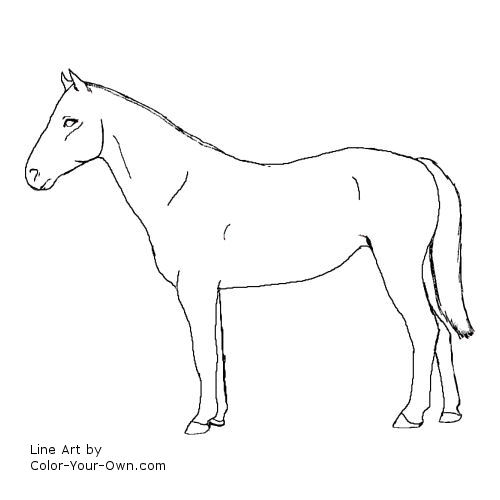 Standing Horse Outline