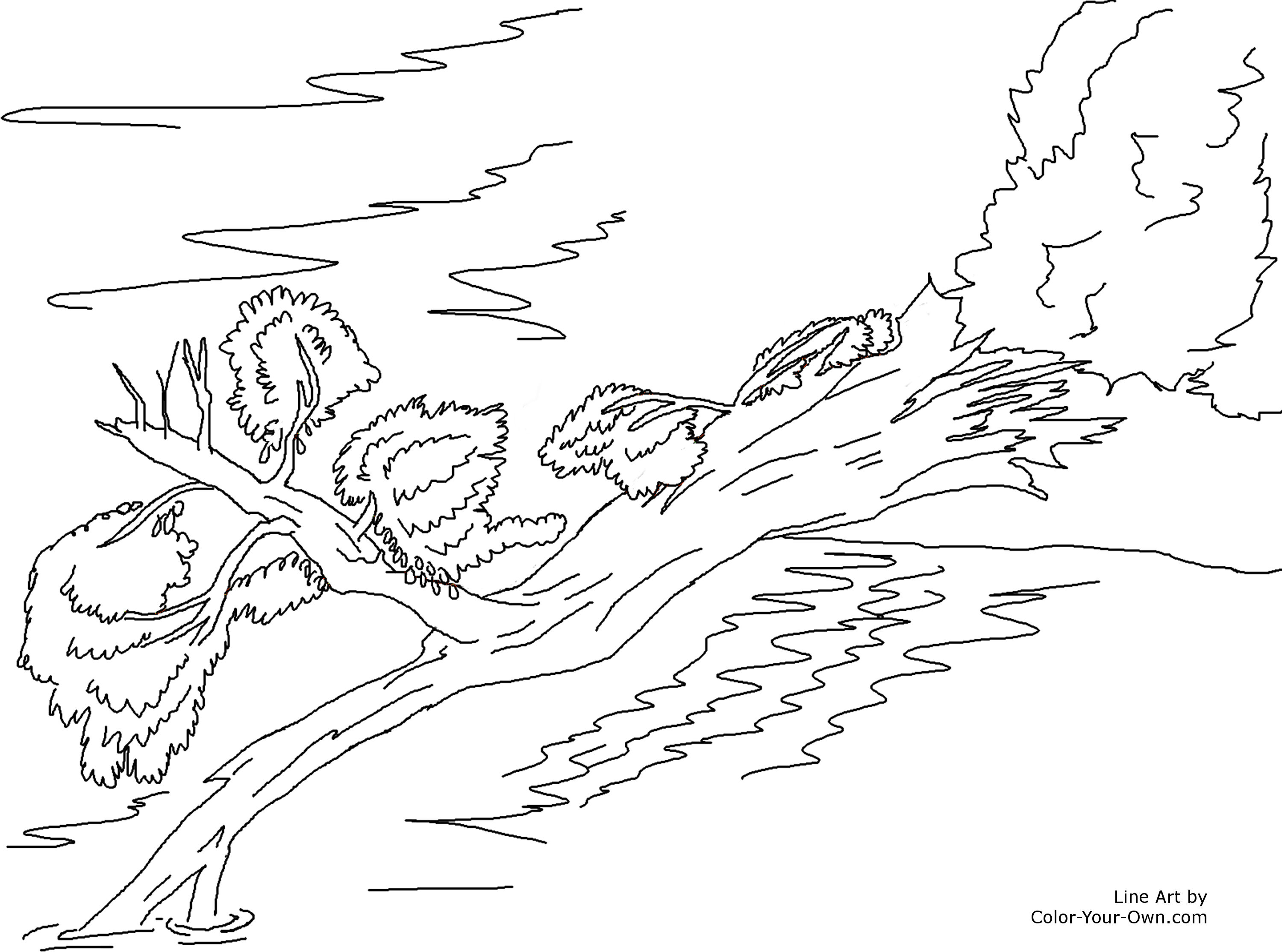 falling trees Colouring Pages