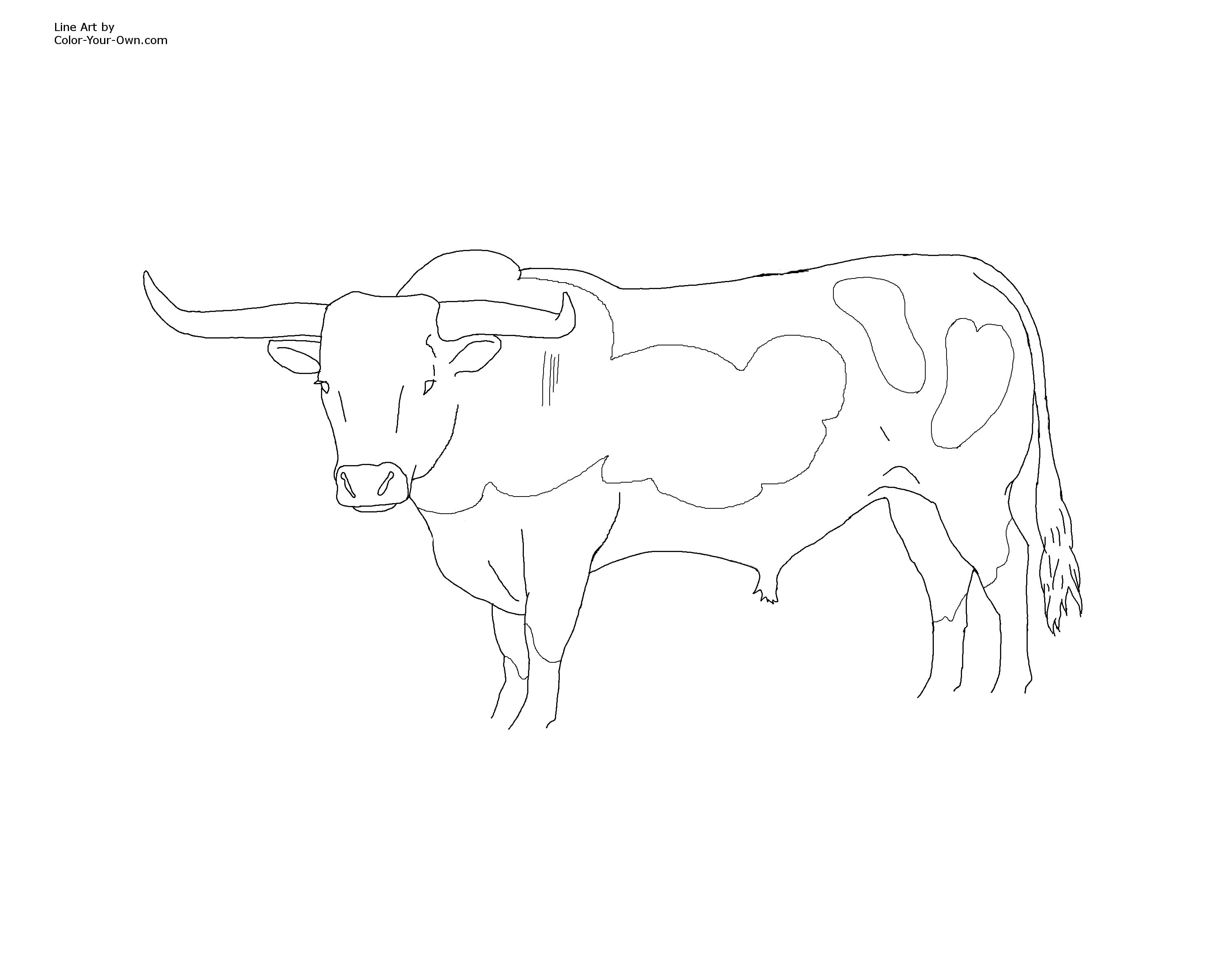 Free coloring pages of bull logo