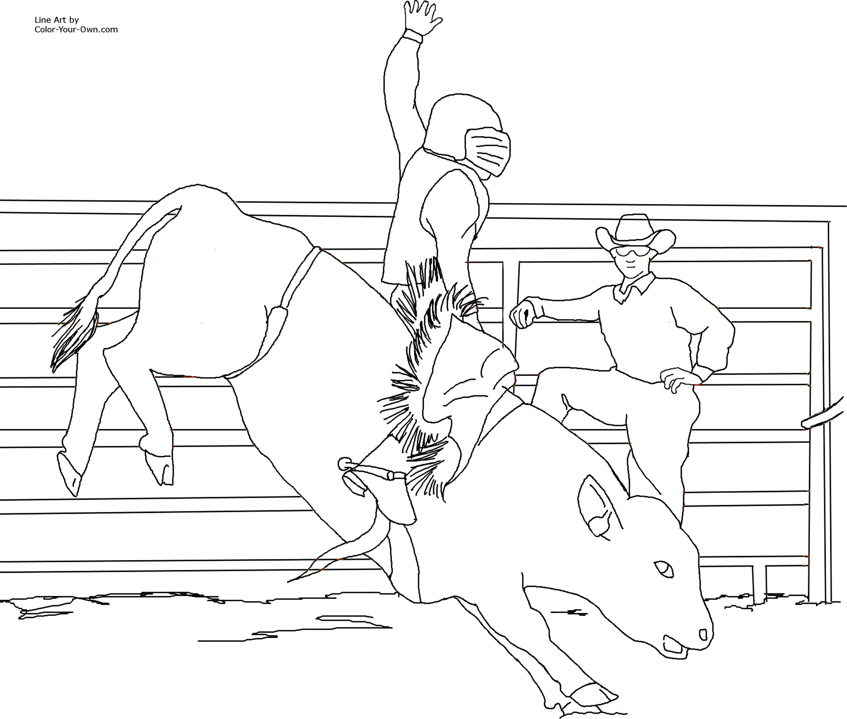 Miniature Bucking Bull Coloring Page