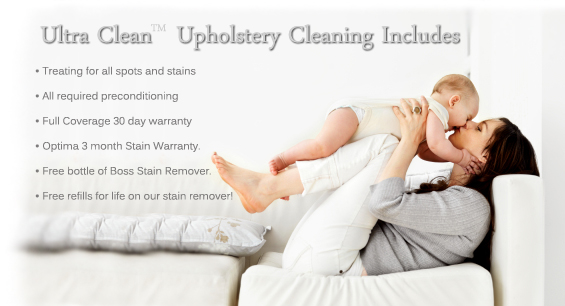 denver sofa cleaning panache pet bed boss services mesa tempe chandler gilbert montgomery mobile huntsville upholstery and