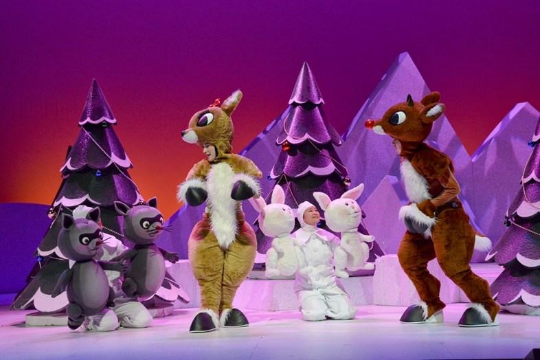 Denver Holiday Show