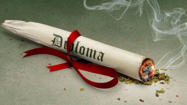 marijuana funded scholarship