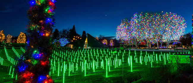 Honda Of Greeley >> Blossoms of Light + Zoo Lights 2017