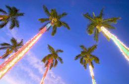 hawaiian christmas party