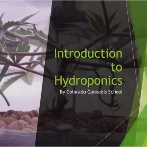 Intro to Hydroponics