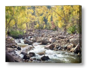 Left Hand Creek Canvas Wall Art Print