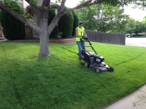 happy roots - lawn mowing service
