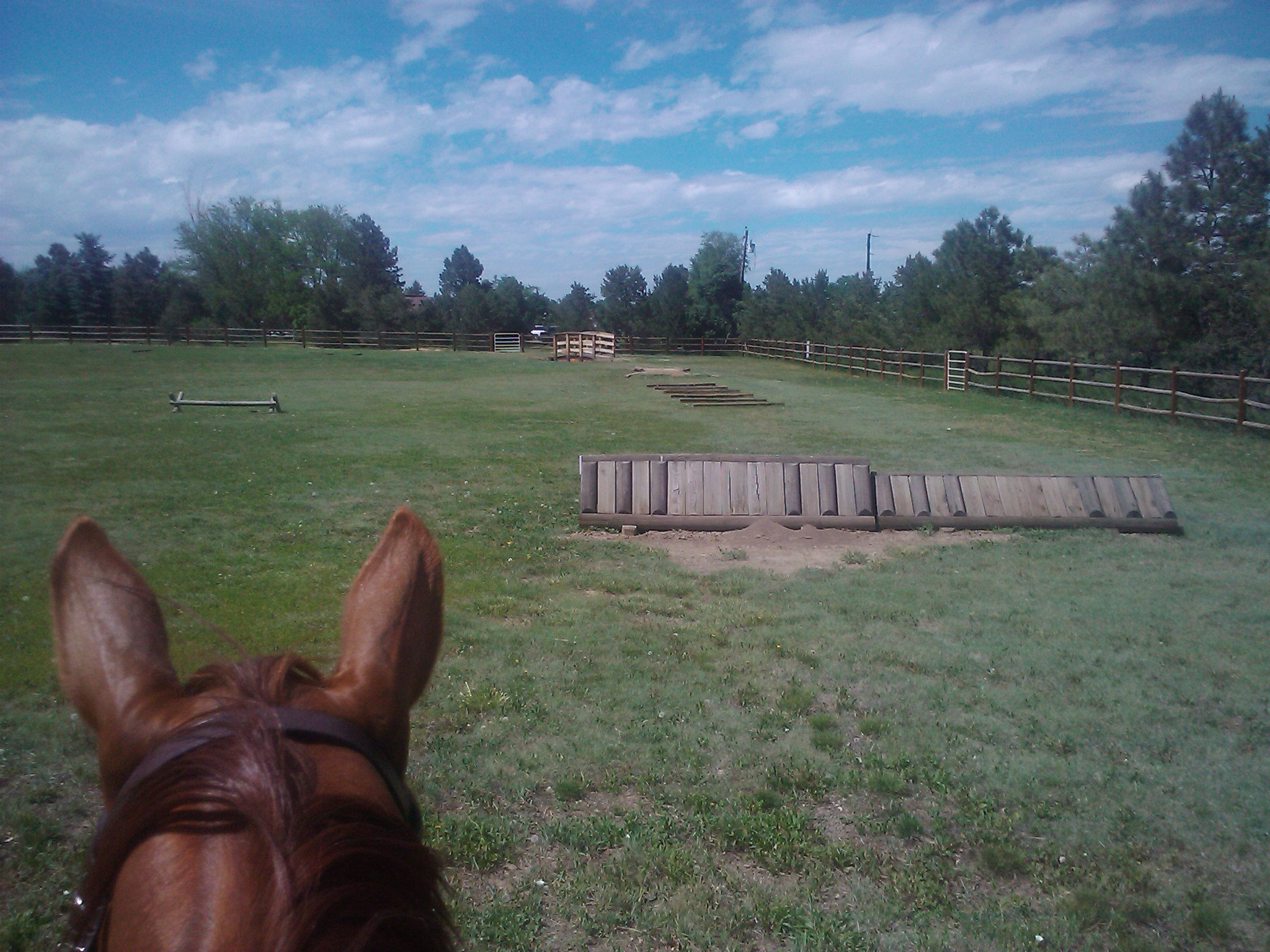 Horse Lease Do's and Don'ts