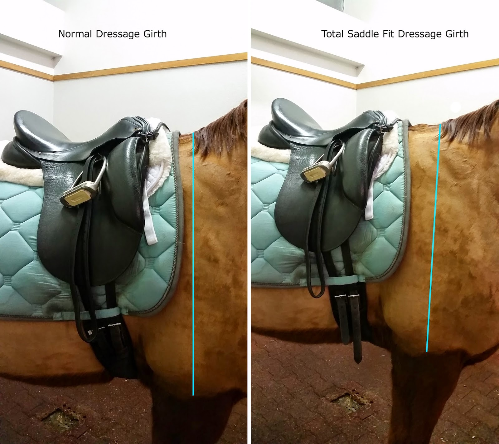 Total Saddle Fit Girth Review