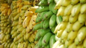 Bananas and Horses