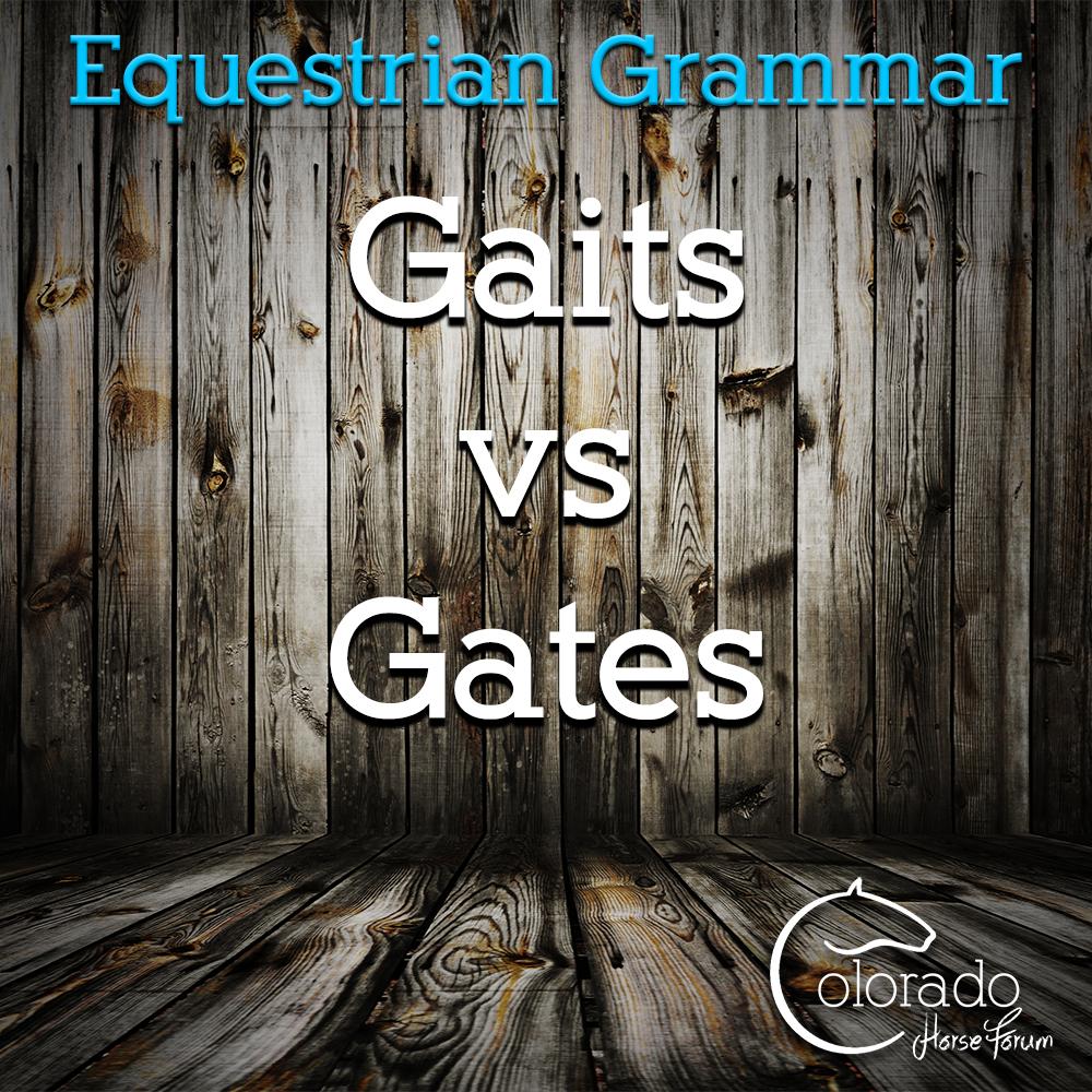 Equestrian Grammar - Gaits vs Gates