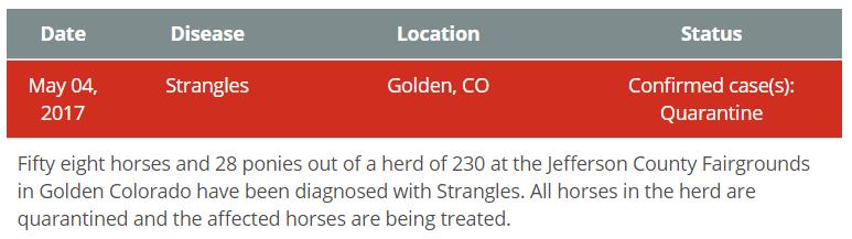 Strangles Outbreak in Colorado