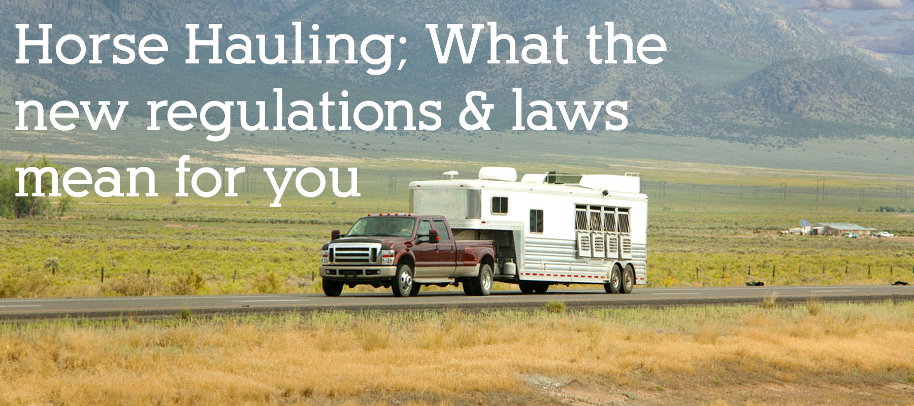 Horse Hauling - what the new regulations and laws mean for you
