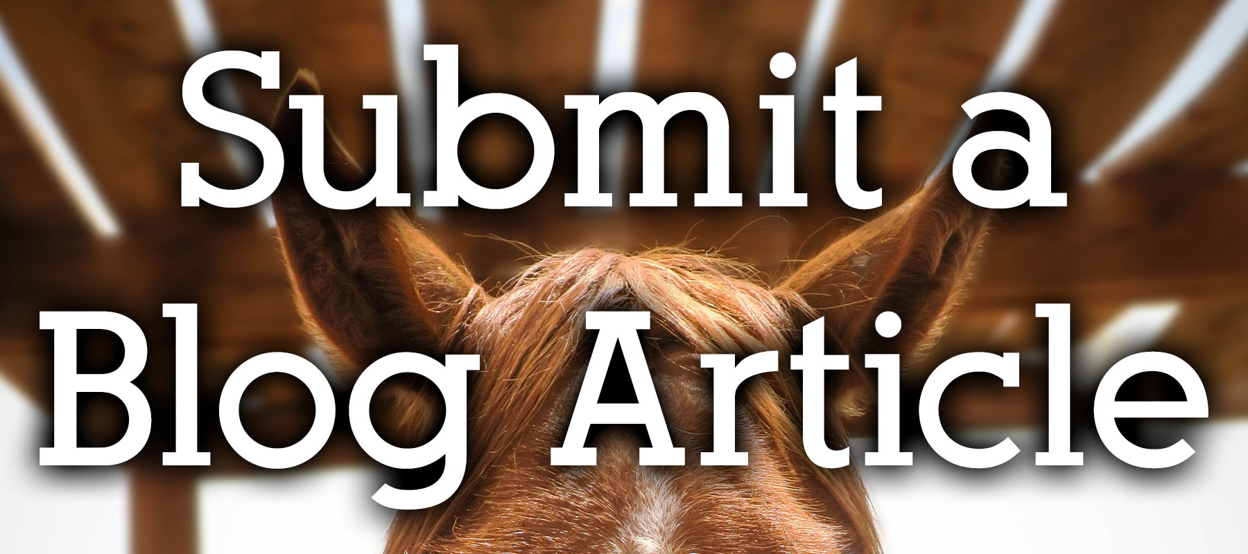 Submit a Blog Article to the Colorado Horse Forum