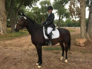 Jana Steffen Dressage Clinic @ Patch Ranch  |  |  |