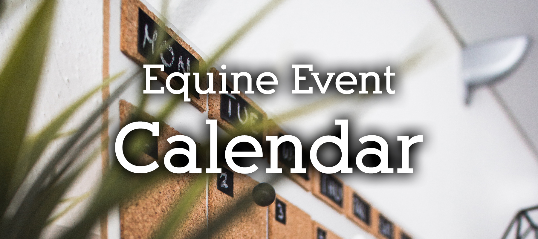 Equine Event Calendar in Colorado