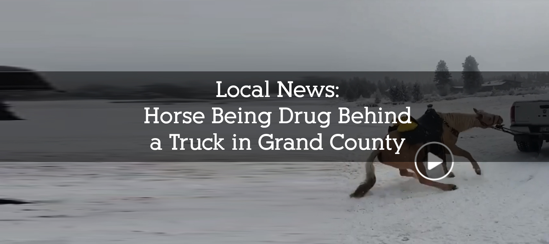 Horse Being Drug in Grand County