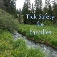 Tick Safety for Families This Outdoor Season