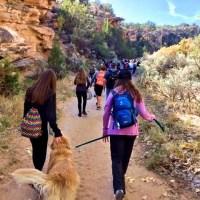 When a 7th Grade Hiking Field Trip Goes Awry