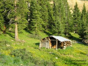 log cabin near Independence Pass