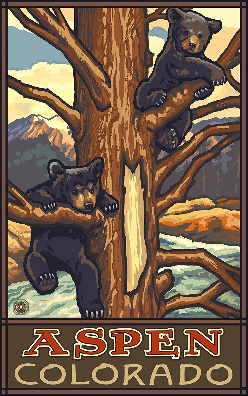 Aspen Colorado Two Bear Cubs Poster