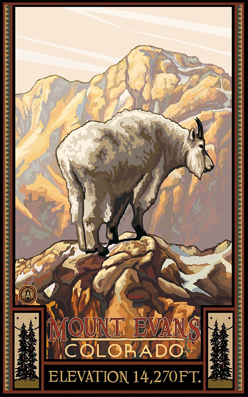Mt. Evans Colorado Mountain Goat