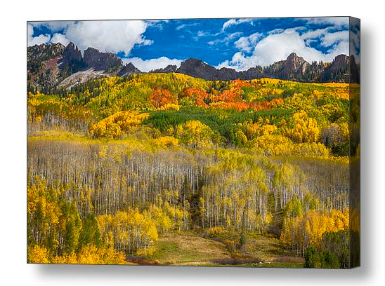 """Colorful Colorado Kebler Pass Fall Foliage "" by James BO Insogna printed on premium canvas and stretched on 1.5"" x 1.5"" stretcher bars (gallery wrap) or 5/8"" x 5/8"" stretcher bars (museum wrap). Ships within 3 - 4 business days and arrives ready-to-hang with pre-attached hanging wire, mounting hooks, and nails. Choose from multiple print sizes, border colors, canvas materials, and frames."