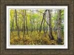 Golden Forest Bed Custom Framed Art Print