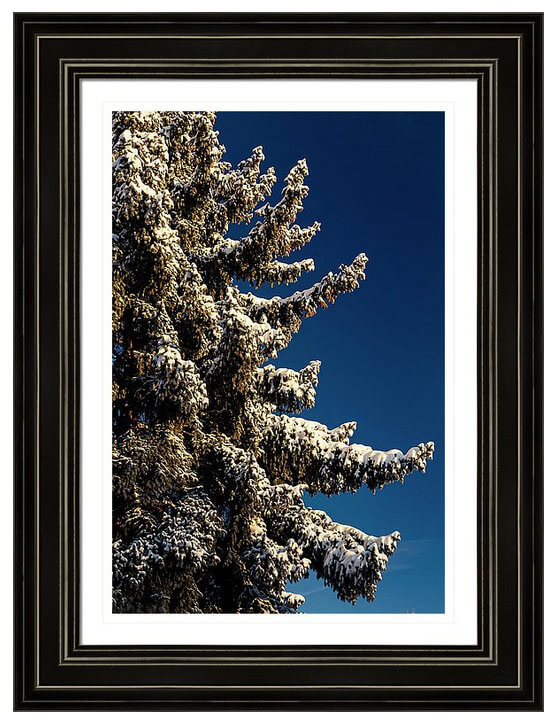 Order Colorado nature landscape framed prints here.