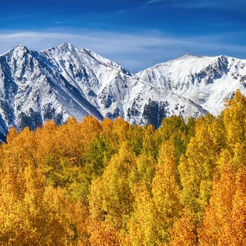 Colorado Rocky Mountain Autumn Magic