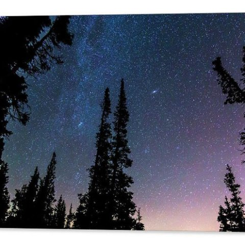 Getting Lost In A Night Sky Acrylic Print