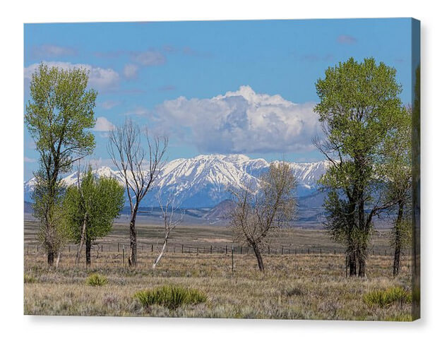 Sangre de Cristo Rocky Mountain Nature Landscape Canvas Print