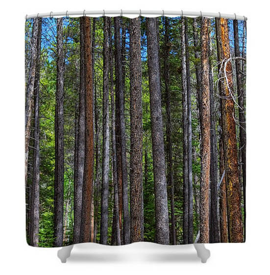 Pine Tree Forest Shower Curtains