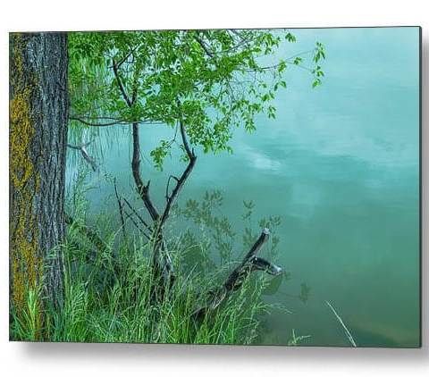 Reflections, Texture And Water Metal Print