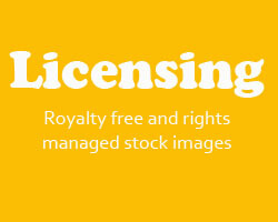 Image Licensing Royalty free and rights managed stock images