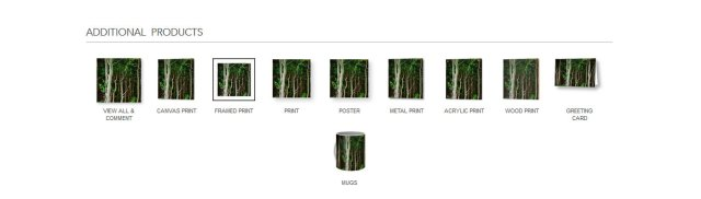 deep-forest-additional-products